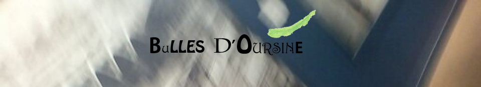 Bulles d'Oursine