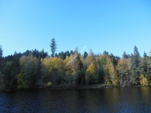 Titisee H 2